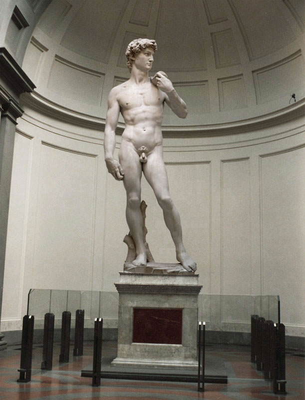http://www.museumsinflorence.com/musei/David_by_michelangelo.html